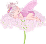 Sleeping Pixy Fairy