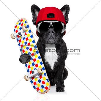 skateboard skater dog