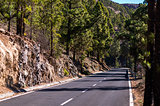 Road to Teide volcano. Tenerife, Canary Islands. Spain