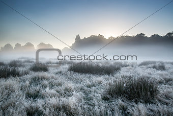 Beautiful Autumn Fall foggy dawn landscape over frost covered field