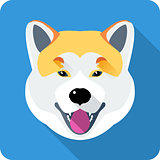 dog Akita Inu Japanese breed icon flat design