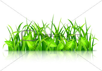Green Grass and Leaves