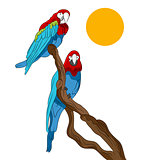 Parrots Sitting In Tree