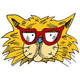 Eyeglasses Cat Face