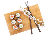 Sushi maki set with salmon and cucumber and sakura branch