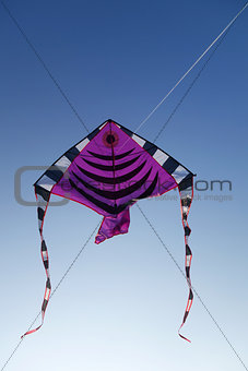 A kite fly in the sky