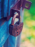 Lock on Fence for Security