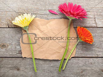 Three colorful gerbera flowers with paper for copy space