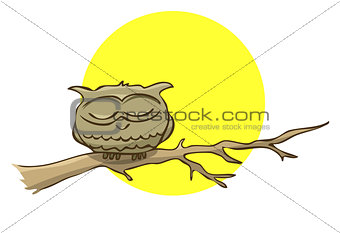 Sleeping owl sitting on a branch on a background of the full moo