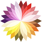 Flower color lotus silhouette for design. Vector illustration.