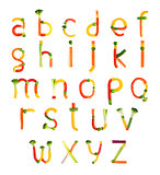 alphabet created by vegetables on a white background