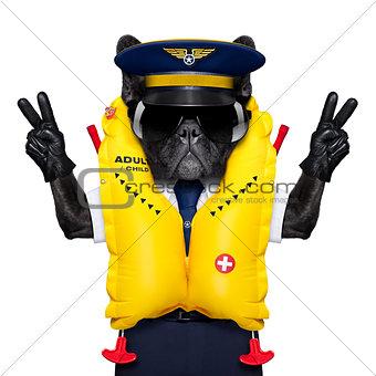 captain cockpit airline dog