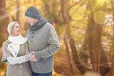 Composite image of mature winter couple