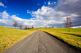 Empty road in the spring landscape
