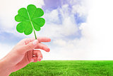 Composite image of shamrock