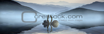 Beautiful romantic image of swans on misty lake with mountains