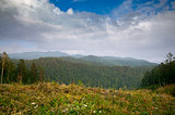 Siberian mountains, hills and forest beautiful landscape view under summer sky