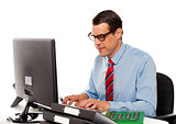 Portrait of an accountant working on computer