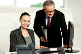 Team of two business executives working in office