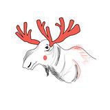 portrait of moose