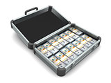 Aluminum case full of money
