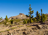 Teide National Park, Tenerife. Canary islands, Spain