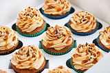 Boxed caramel cupcakes set