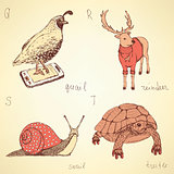 Sketch fancy animals alphabet in vintage style