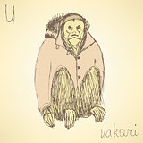 Sketch fancy uakari in vintage style