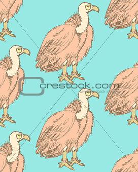 Sketch fancy vulture in vintage style