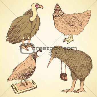 Sketch fancy birds in vintage  style