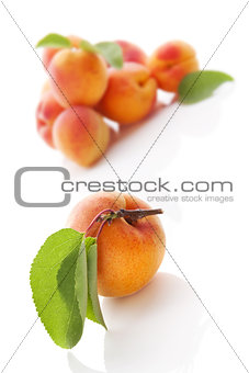Apricots isolated on white.