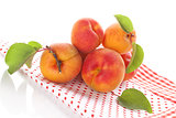 Ripe apricot still life.