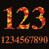 Numbers made with leaves, floral numerals set, vector illustrati