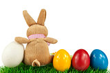 Bunny with colorful Easter eggs