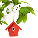 The birdhouse