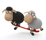 3d sheep on a skateboard
