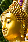 Golden Buddhist statue face