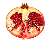 delicious half pomegranate