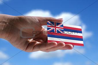 Small Hawaiian flag