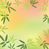 Green leaves on colorful background.