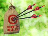 Marketing Research - Arrows Hit in Red Target.