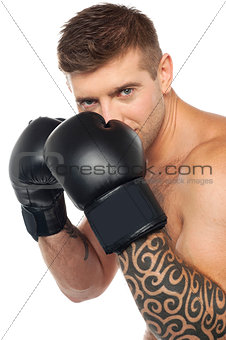 Portrait of caucasian male boxer ready to punch