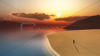 3D female walking on the beach