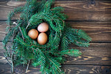 Easter egg in the nest on rustic wooden background
