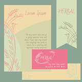 Set of design elements. Business cards, flyers, check, background.