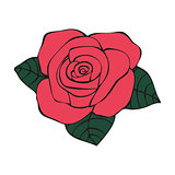 Rose in tattoo style