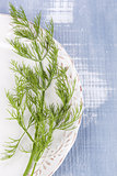 Fresh dill on vintage plate.