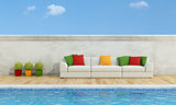 Pool with Modern sofa