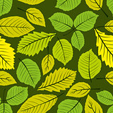 Different leaves seamless pattern, vector natural endless backgr